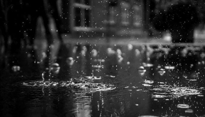 Ahmet Muhip Dıranas Şiirleri-Yağmur Gül ve Eller