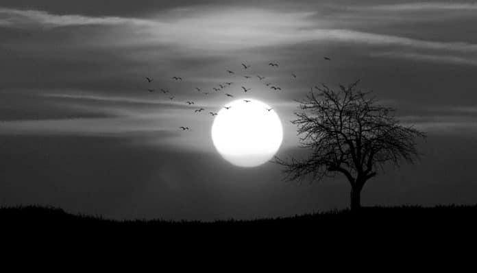 Halit Fahri Ozansoy Şiirleri-Akşam
